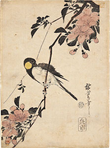 Hiroshige, Kacho-e of a Great-tit on a Plum Branch